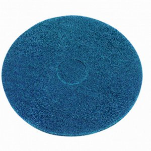 Wet Scrub/Heavy Duty Pad